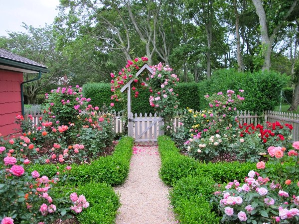 rose garden Cottage garden design with roses – Wilson Rose Garden