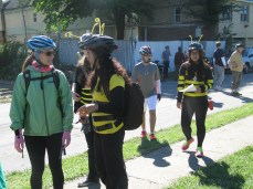 costumes bring awareness of the plight of the honey bee