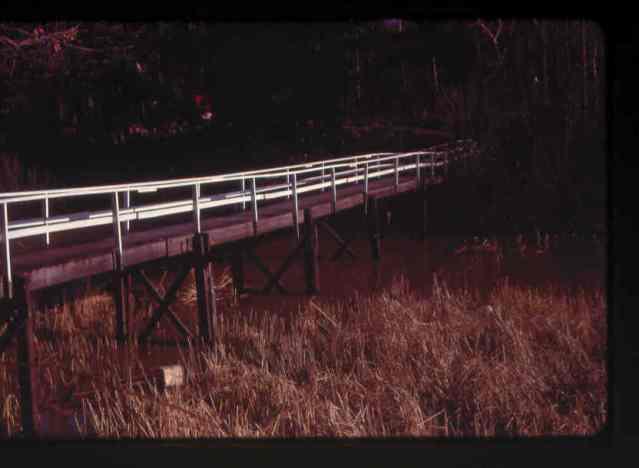 1st high level bridge (New)