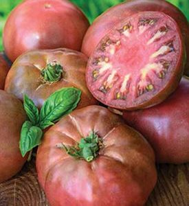 Heirloom Tomato Black Krim