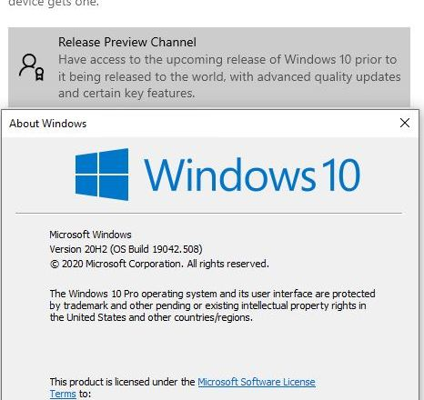 Settings/Update&Security/WindowsInsider/ReleasePreview+Winver