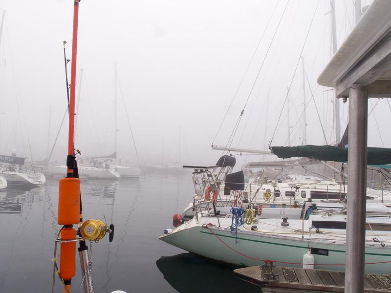 Weckruf Nebelhorn: diesen Nebel haben wir nun schon den ganzen Tag