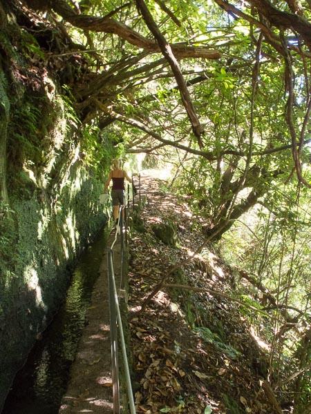 Caleirao Verde: links der Berg, rechts der Abhang. Dazwischen der Levada und Susanne.