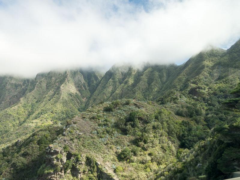La Gomera: Urwald in den Wolken