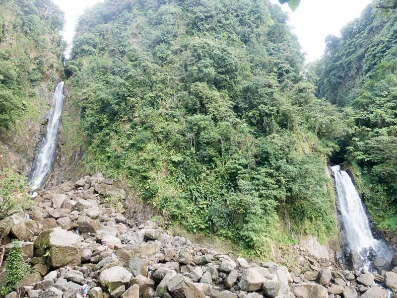 Regenwald auf Dominica: die Trafalgar Falls.