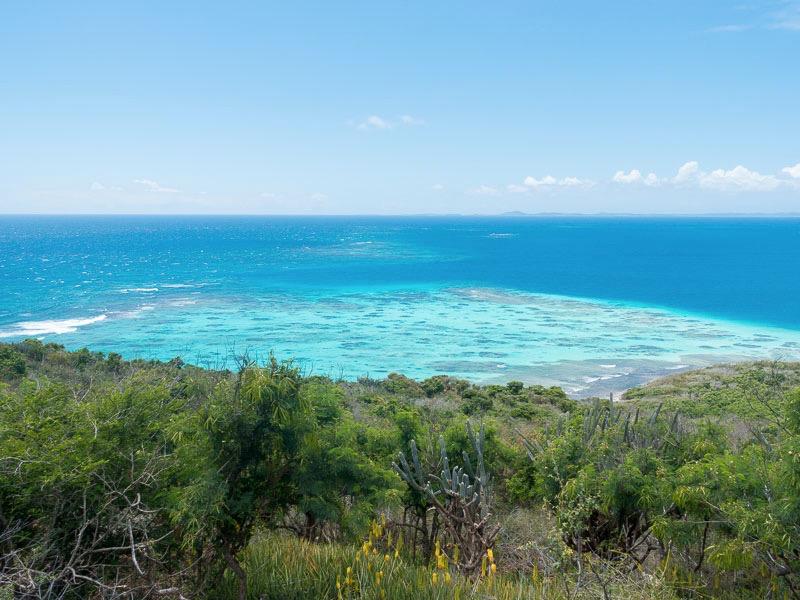 Culebrita: das Riff mit Korallenköpfen