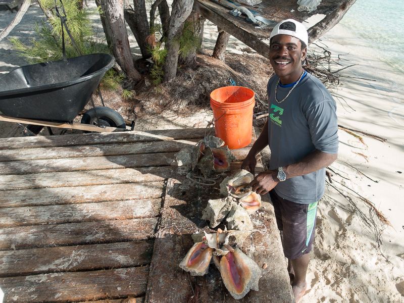 Leornado am Werk: die Conch muss ihr Haus verlassen