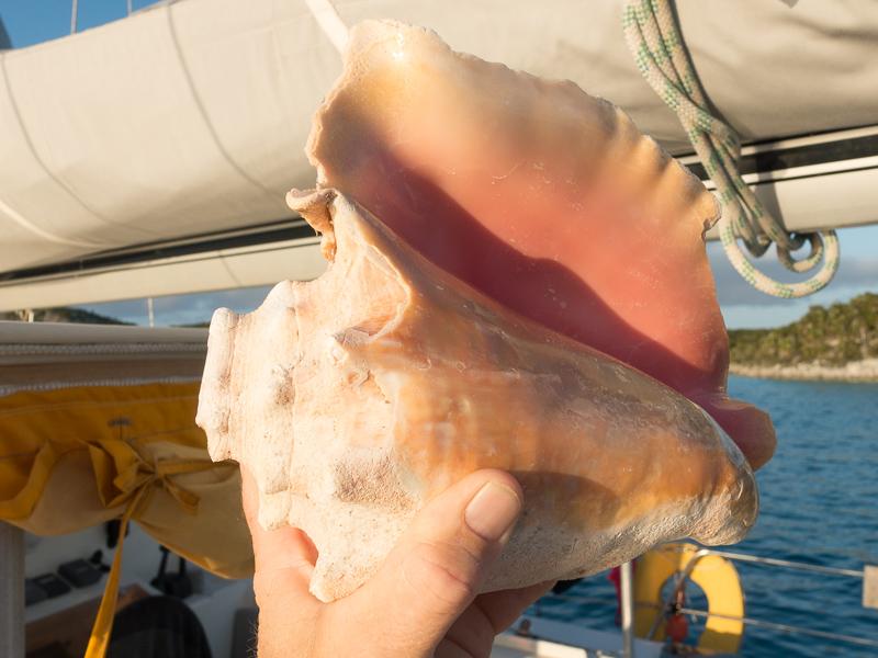 Das Conch Horn: es wird vor allem zum Sonnenuntergang geblasen. Eine gesunde Alternative zum alkoholischen Sundowner