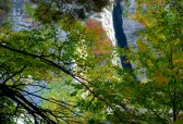 Mohonk Fall colors 6