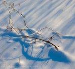 Snow shadows 5