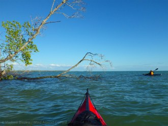 We paddle on down the line of the Ten Thousand Islands