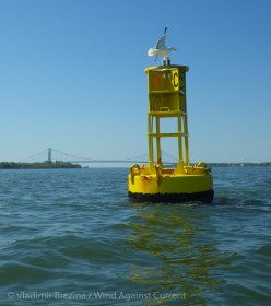 Yellow buoy on the Bay Ridge Flats