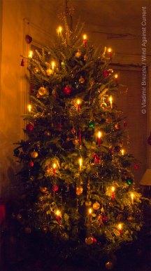 Christmas 2014 14