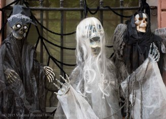Halloween decorations 2015 21