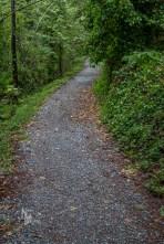 Trail at Sturt Bay