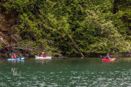 Kayakers in Melanie Cove