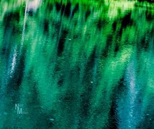 Reflections make an interesting abstract