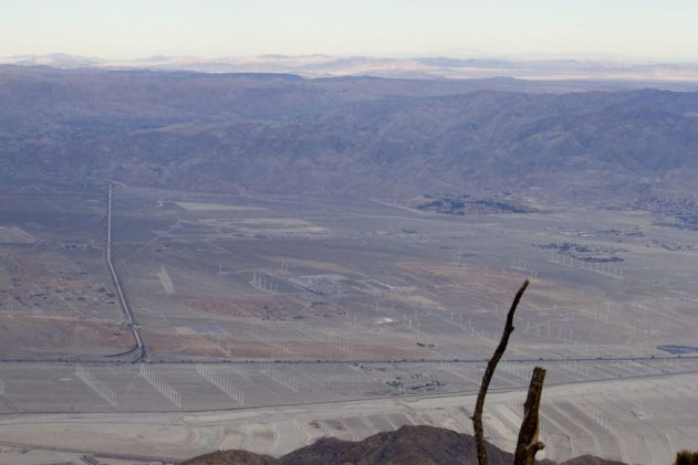 View of wind turbines across the Coachella Valley from Mount San Jacinto.