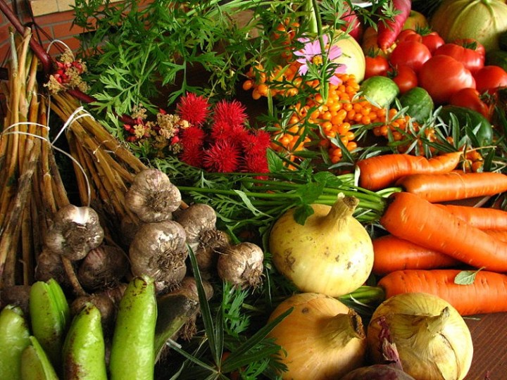 Farm-Ecologically grown vegetables-author Elina Mark CC license https://creativecommons.org/licenses/by-sa/3.0/deed.en
