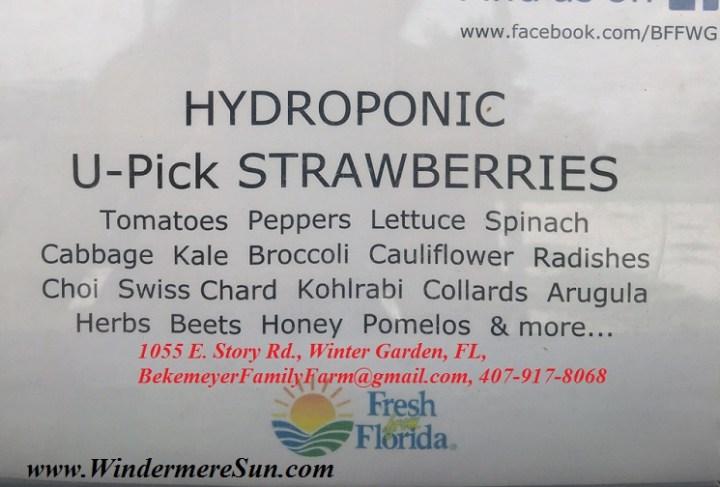 Bekemeyer Hydroponic Farm1b final