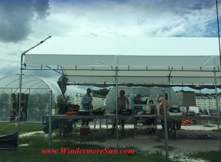 Bekemeyer Hydroponic Farm39 final