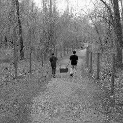 picnic-walk-by Dana Hughes