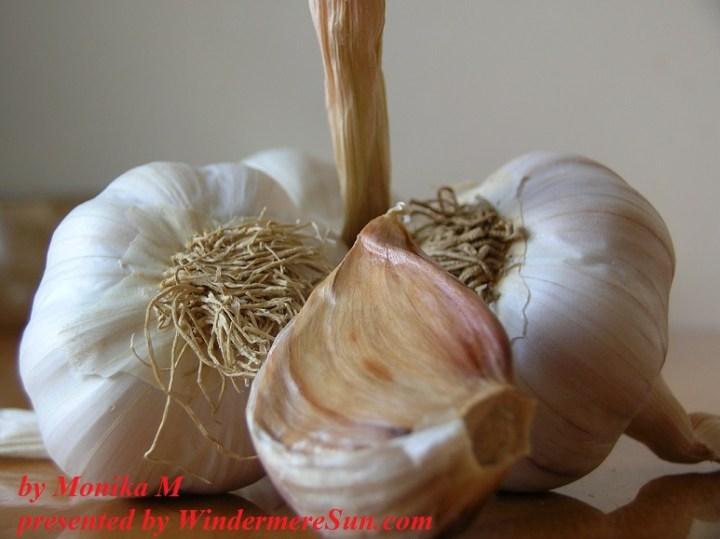 Garlics by Monika M