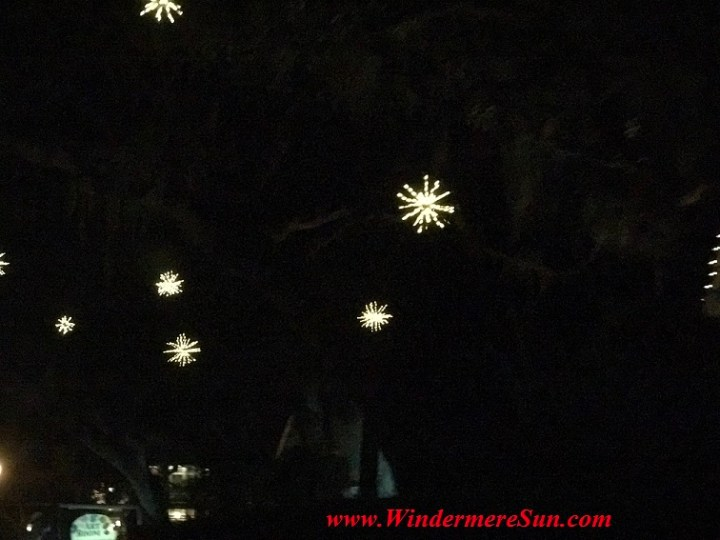 Holiday Lights in a tree near Windermere Town Square (credit: Windermere Sun-Susan Sun Nunamaker)
