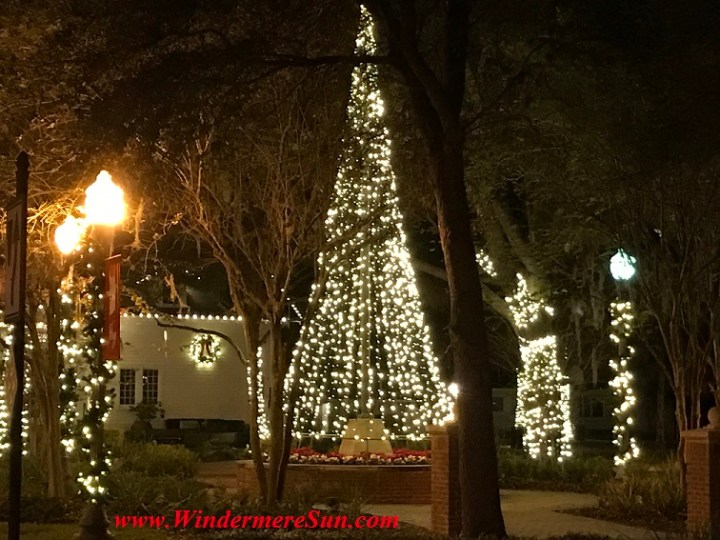 christmas-lights-of-town-hall-town-square10-final