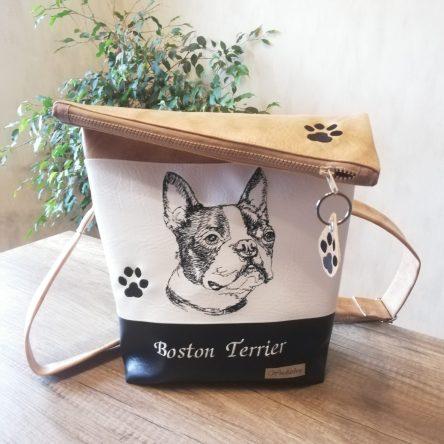 Boston Terrier hellbraun-weiß-schwarz