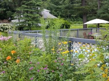 Windflower Inn Flora