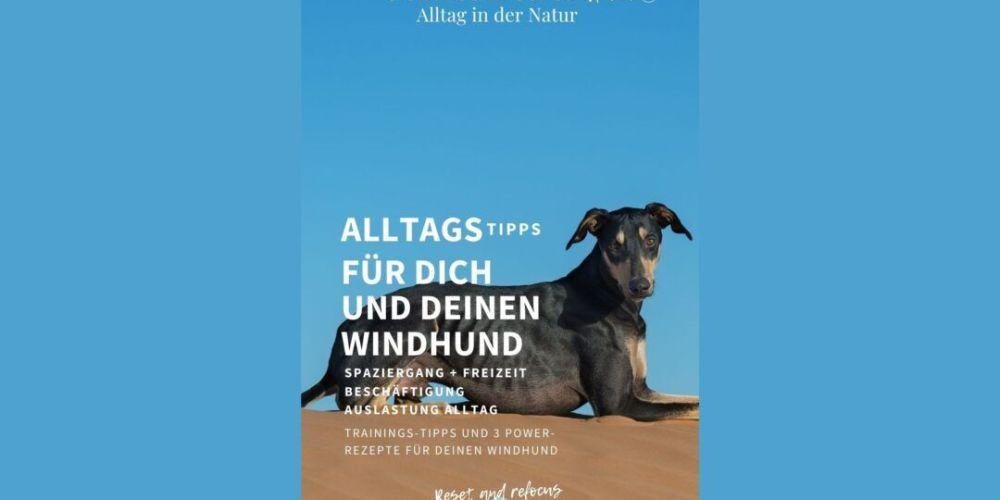 Sighthound Coach Flip Book Nummer 1 wertvolle Tips für den Freilauf und Beschäftigung
