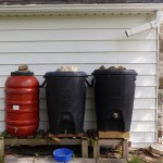 Care for Your Rain Barrels This Summer