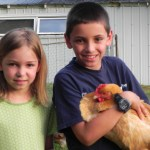 Children and chickens are a natural match.