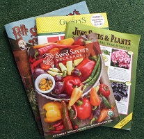 Where We Buy Garden Seed