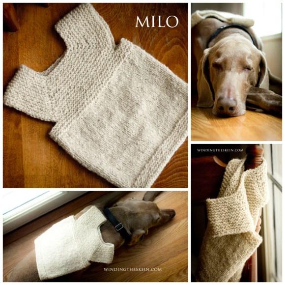 windingtheskein milo, weimaraner dog, knitting, recycled yarn