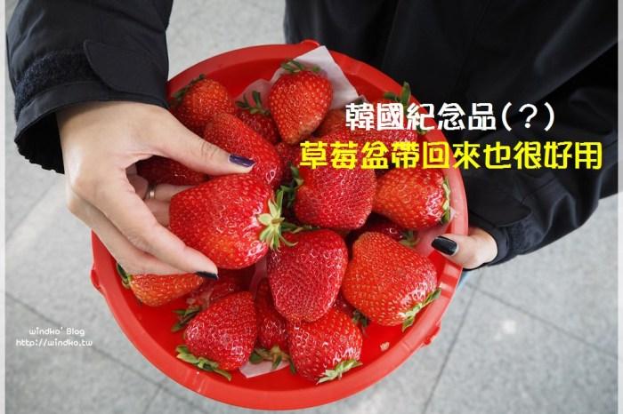 韓國另類紀念品∥ 草莓吃完以後的韓國草莓盆記得帶回來,可以資源再利用唷!