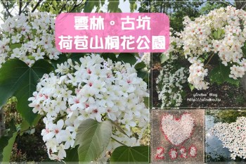 雲林四月雪∥ 古坑 荷苞山桐花公園-散步踏青賞油桐花的必訪景點_2021年客家桐花祭