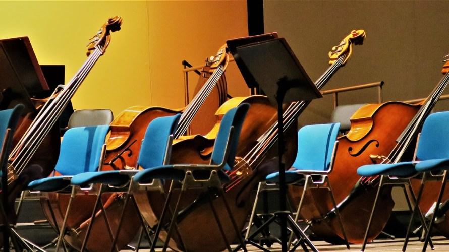 吹奏楽あるある!コントラバス(弦バス)編~えっ?吹奏楽なのになんで弦楽器?