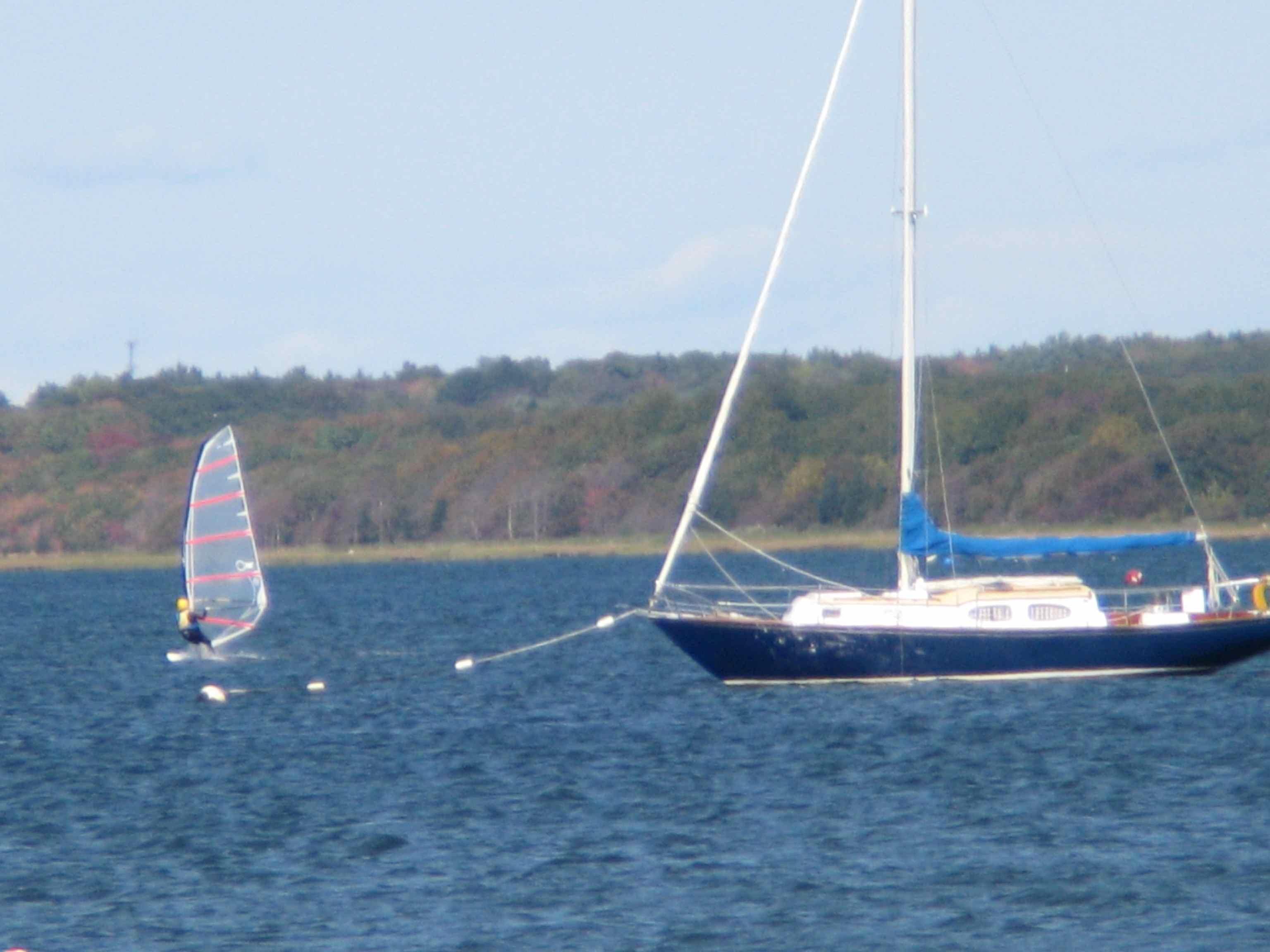 Bob & Sailboat