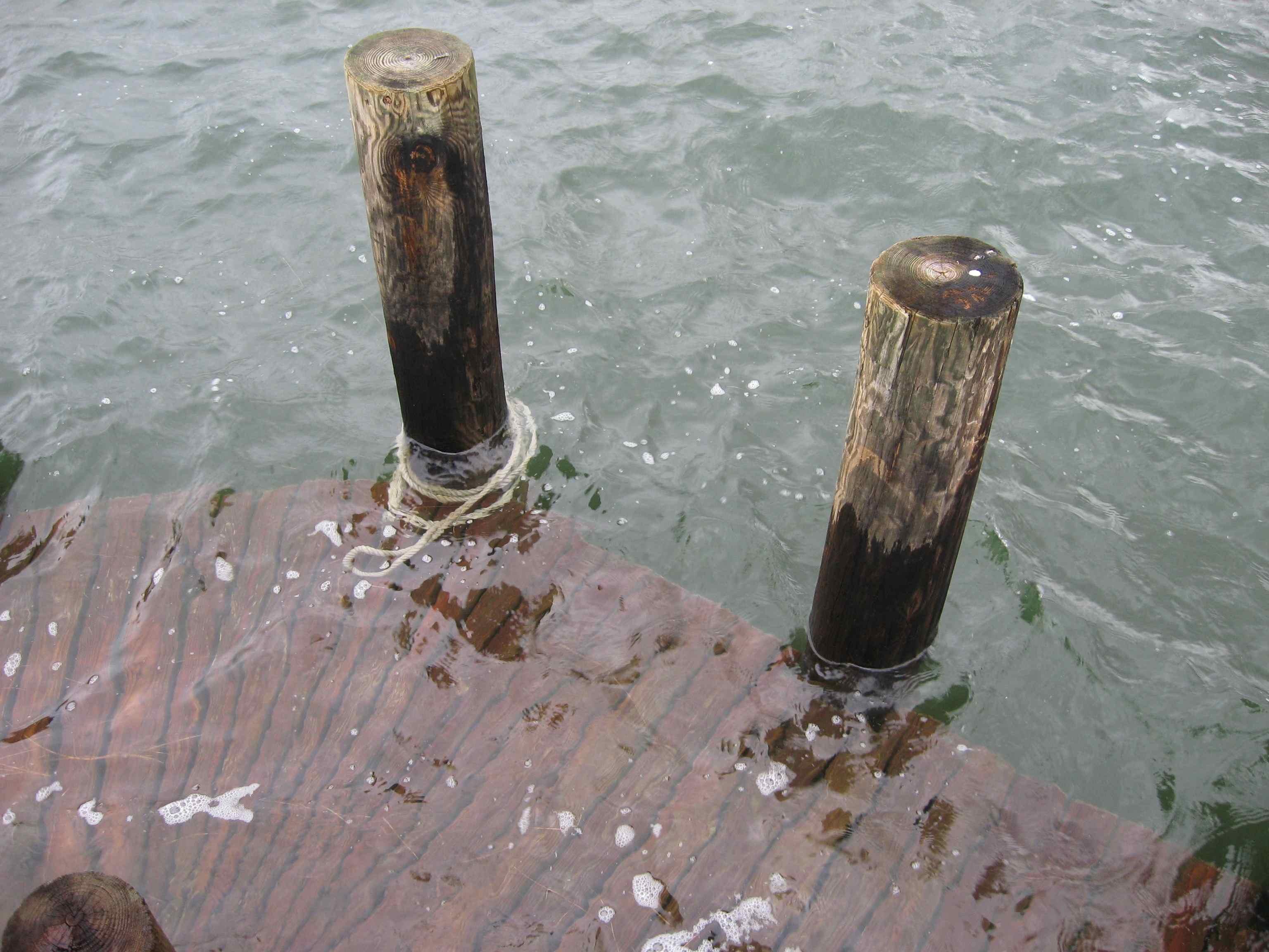 flooded dock 1