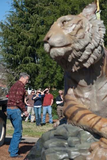Brenau's new 2,200 pound bronze tiger sculpture is now in place on the Gainesville campus. The tiger was designed by Georgia artist Gregory Johnson and commissioned by Irwin 'Ike' Belk, the North Carolina philanthropist.