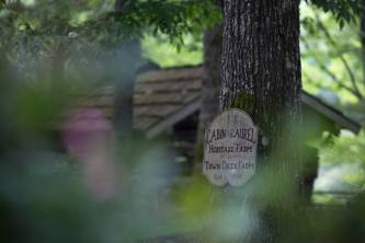 The sign for the Cabin in the Laurel Village, the antique village built at the home to Tom and Joyce Lott. The couple has worked to recreate an antique styled village at their home. (AJ Reynolds/Brenau University)