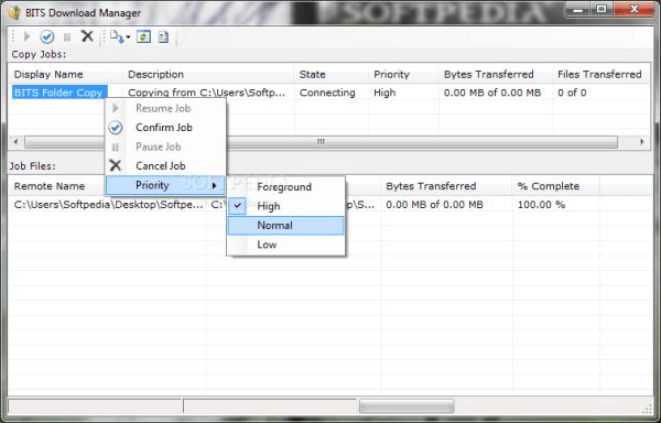 Download BITS Download Manager 0.9
