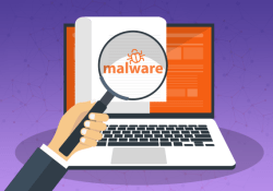 How to Scan and Detect Malware on Windows 11 PC?