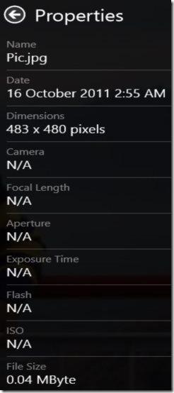 Picasa Photo Details