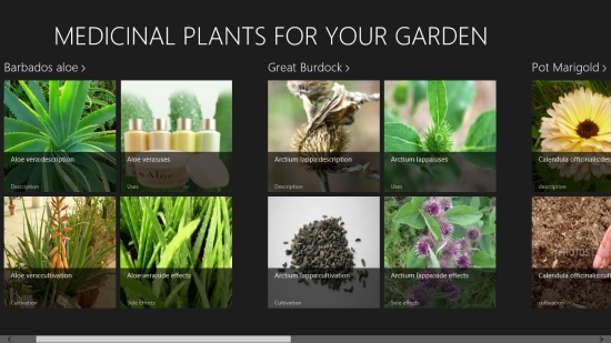 Medicinal Plants For Your Garden - Main screen
