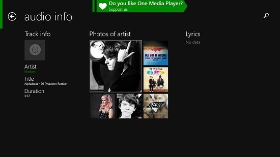 One Media Player Artist Information