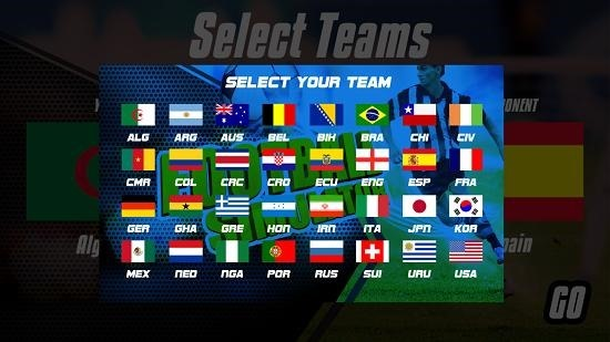 Football Simulator select team