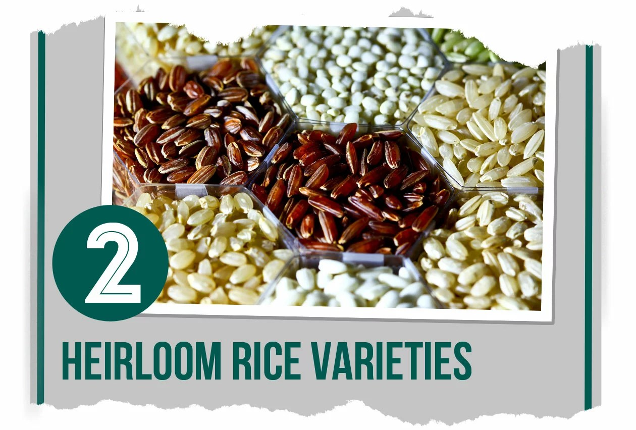 regional-pinoy-foods-2